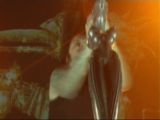 "������� ������ ""Korn"" (�����-���������)2008 �."